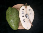 Soursop click to Enlarge